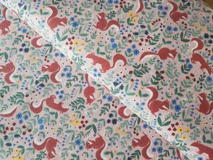 Dětská plátna - Veverky