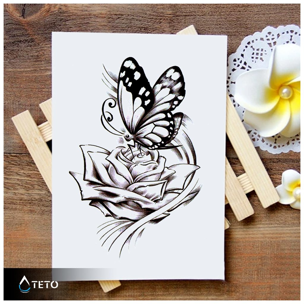 Motýl na růži