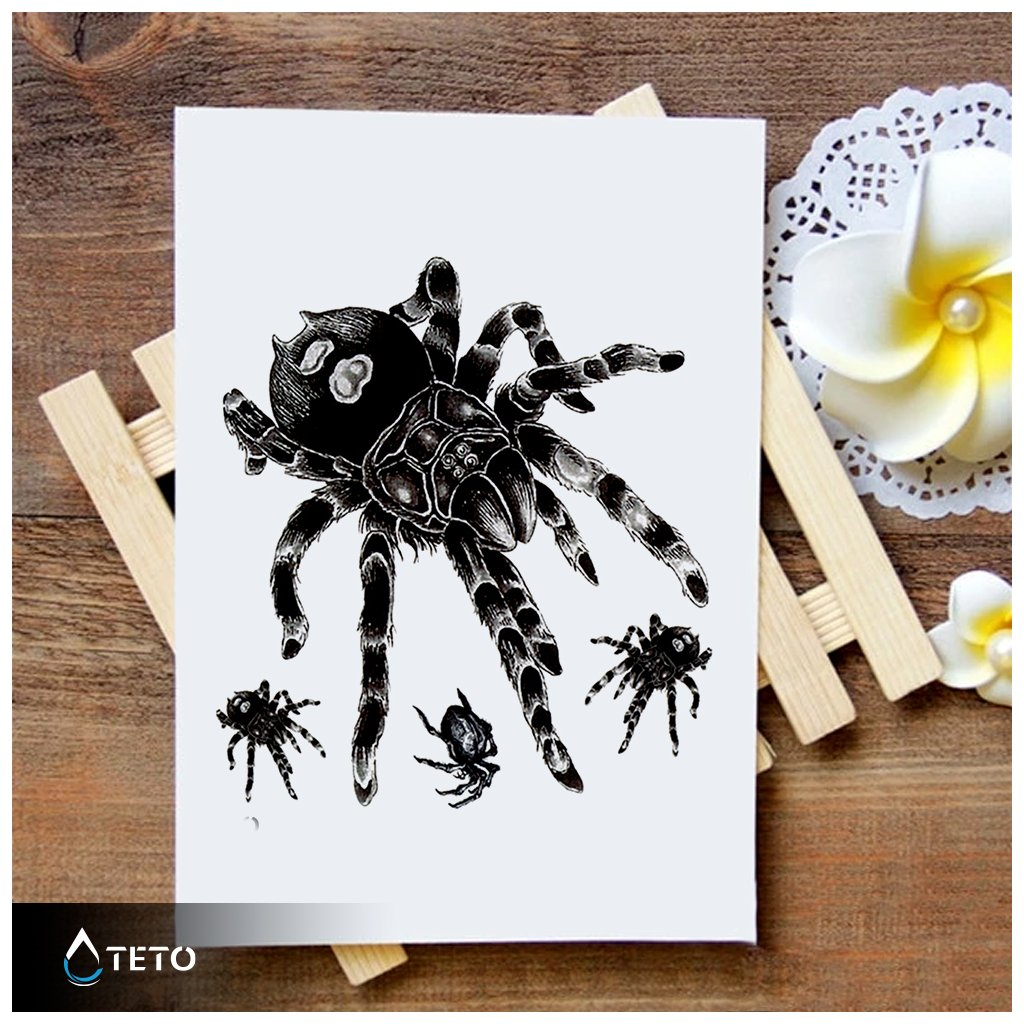 Pavouci - set pavouků