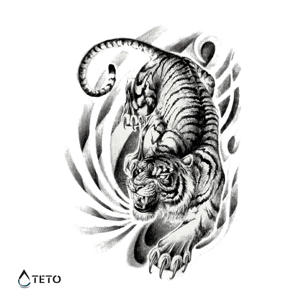 Tygr – Celá záda
