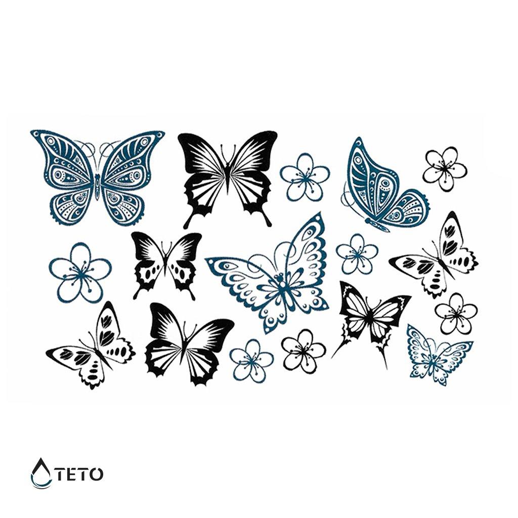 Motýli - set