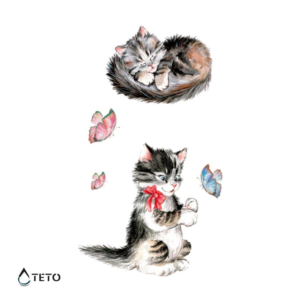 Kotě – set