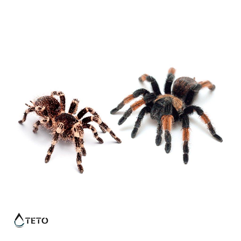 Pavouci 3D – set pavouků