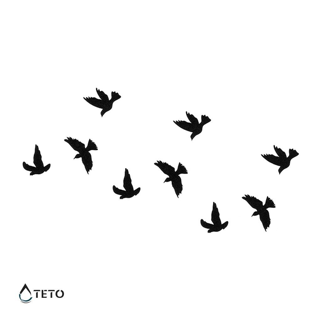 Ptáci - set