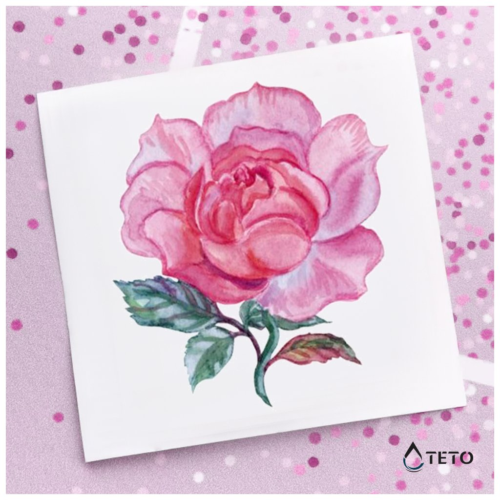 Květina – Růže