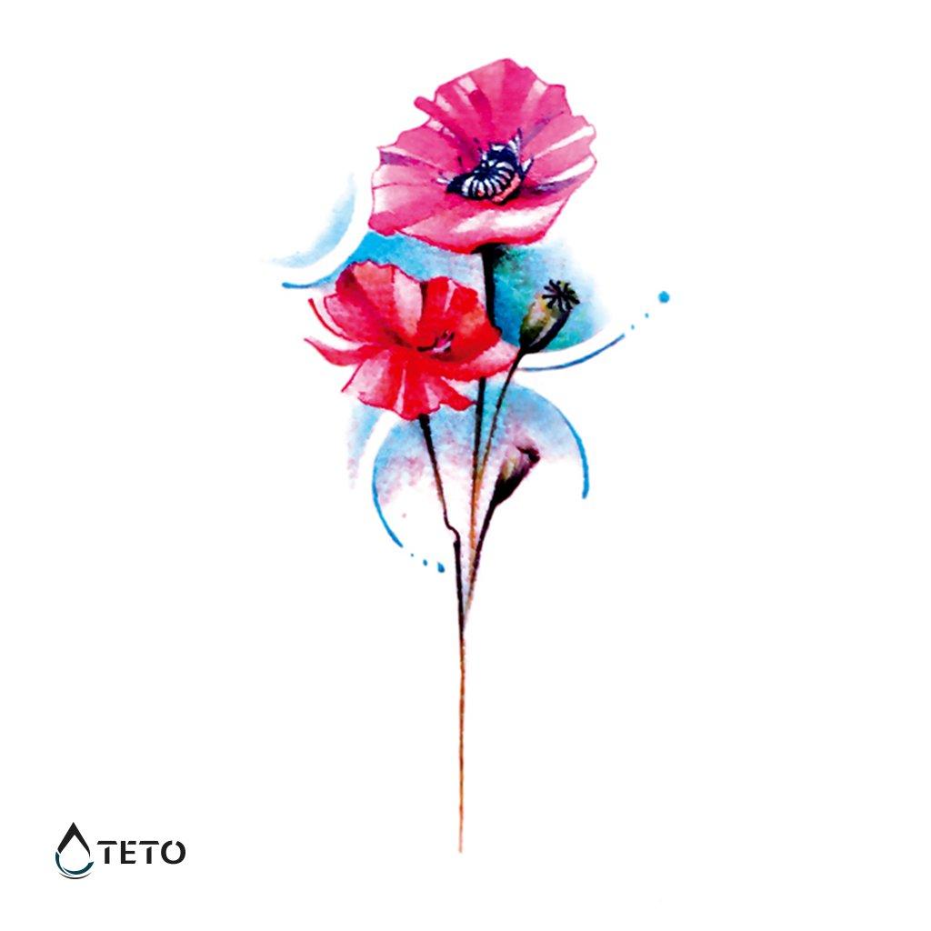 Květina – Vlčí mák