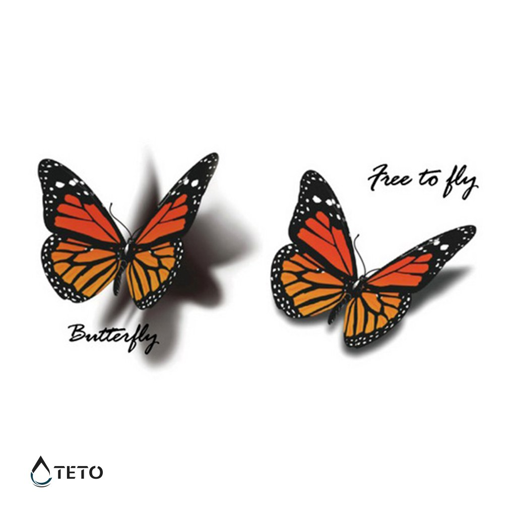 Motýli - 3D - set
