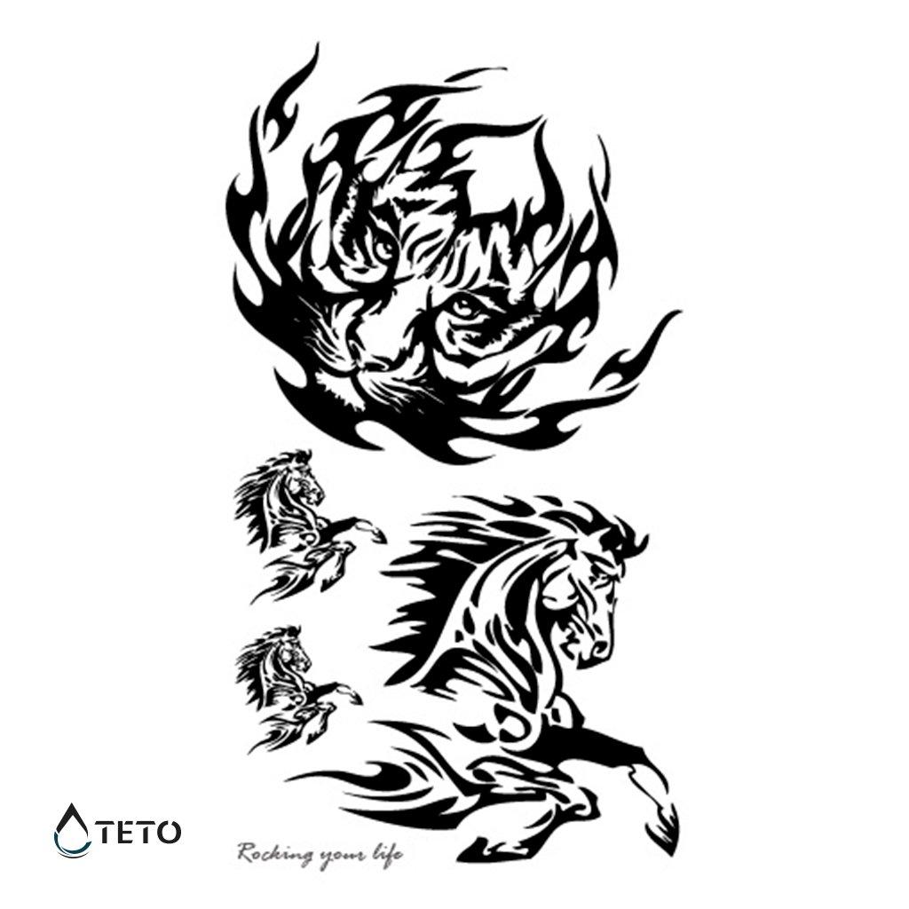 Tygr a kůň - set