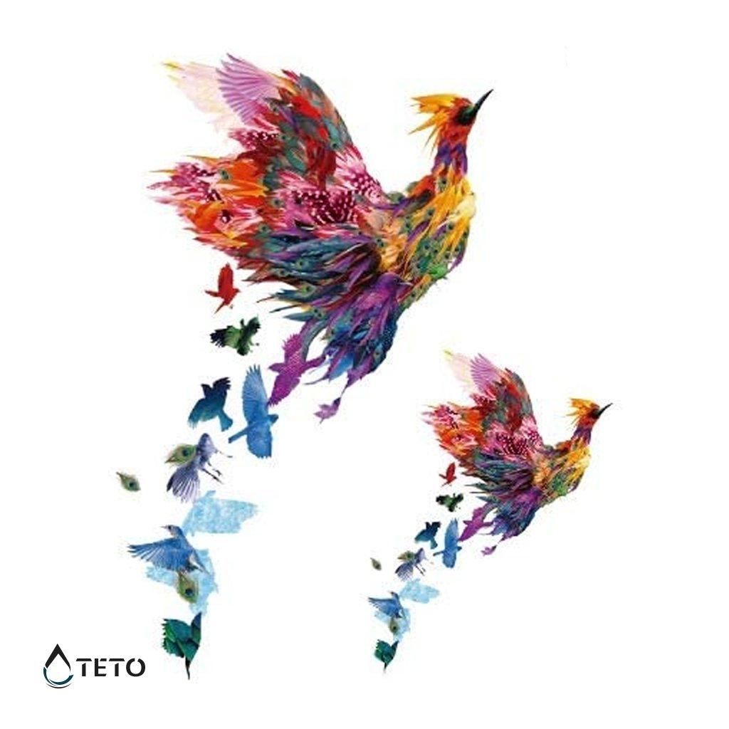 Pták - set