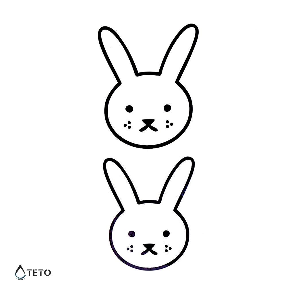 Hlava králíka - set
