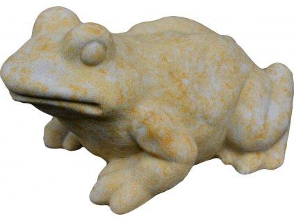 žába - skokan