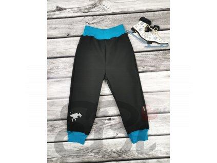 Zimní softshellové kalhoty - černé, T-Rex