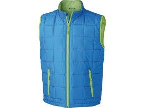 Pánská vesta Padded L Weight Vest