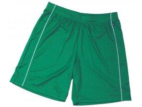 Pánské šortky Basic Team Shorts