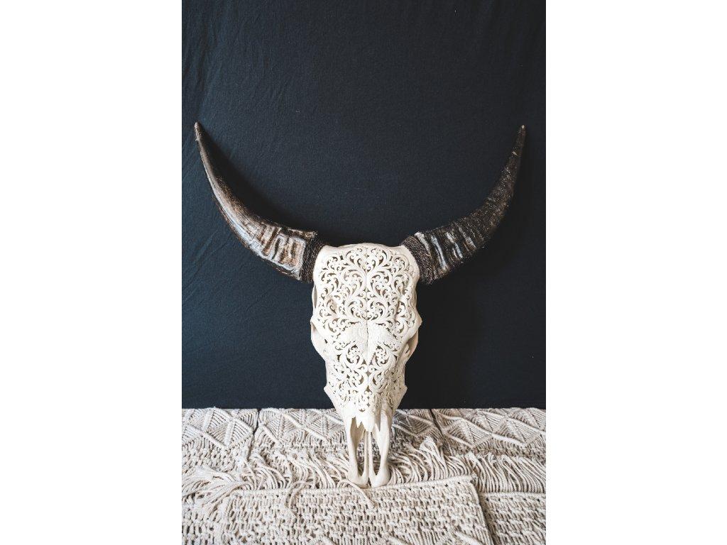 Nástěnná hlava býka