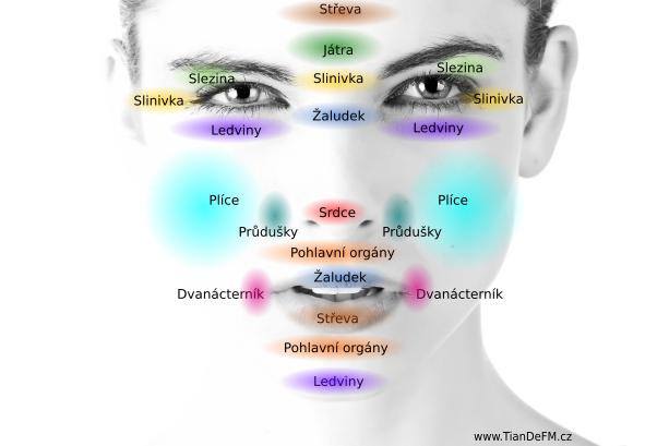 diagnostika_obličeje