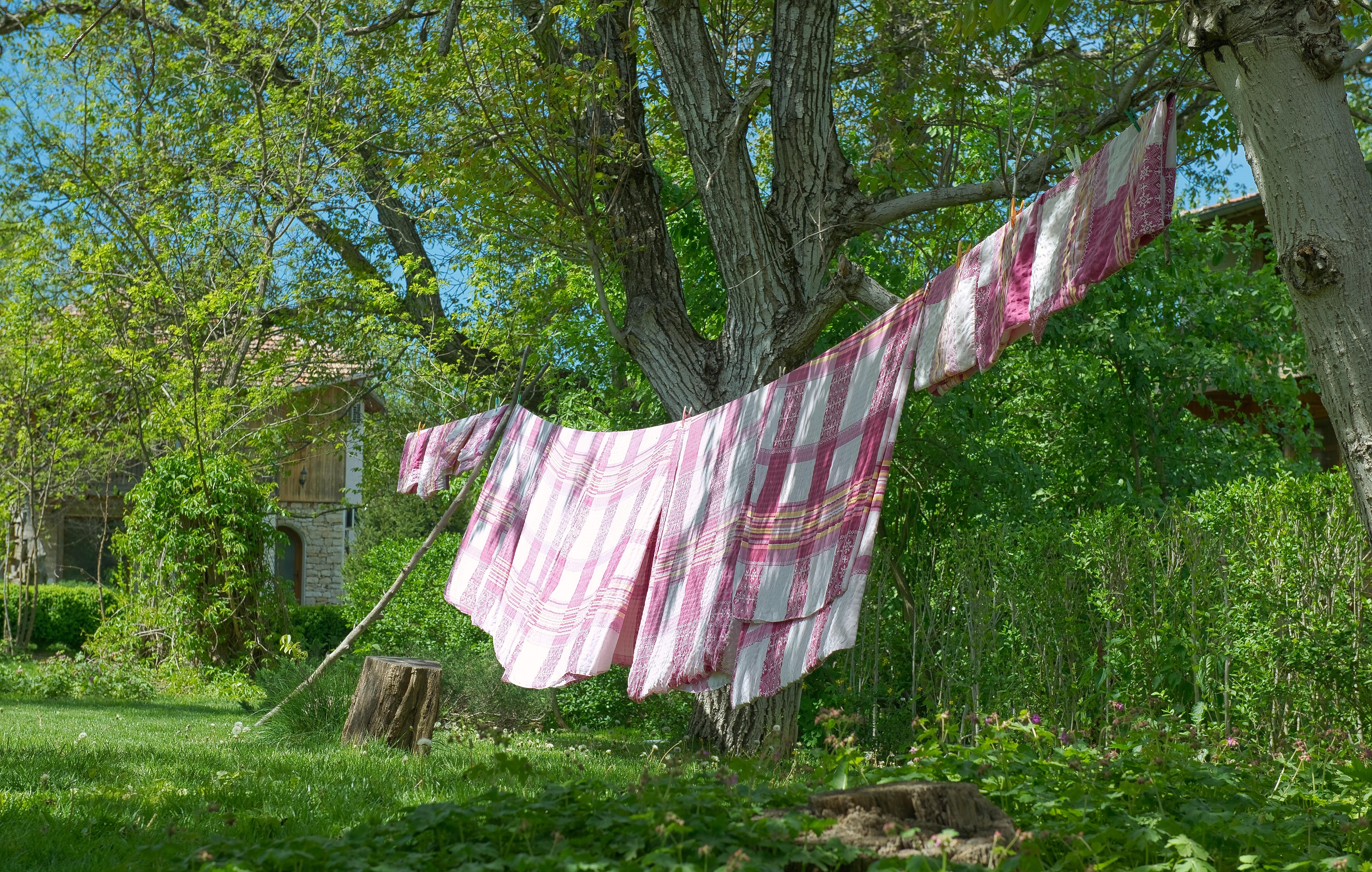 sušení prádla na šňůře mezi stromy
