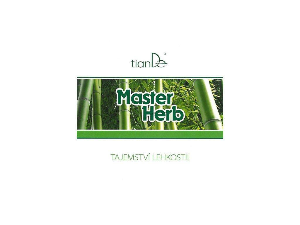 Brožura Detoxikační náplasti Master Herb 100322