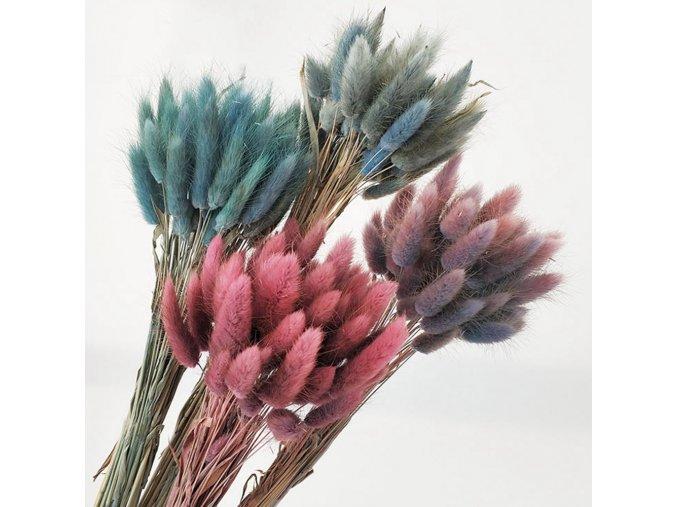 Dekorácia do bytu - tráva, kvietok (Farba Béžová)