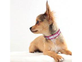Psie luxusné obojok s kamienkami - mačacie obojek- VRÁTANE vyryté meno a tel.číslo