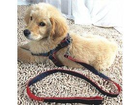 Pes - popruhy pre psa - vodítko - venčenie psov - viac farieb