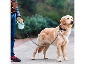Pes - psie vodítko - flexi vodítko - venčení psa