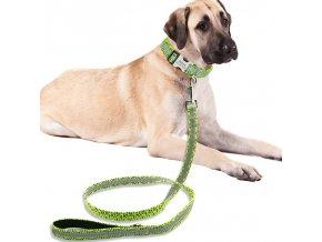 Pes - psie vodítko - reflexná - šport so psom