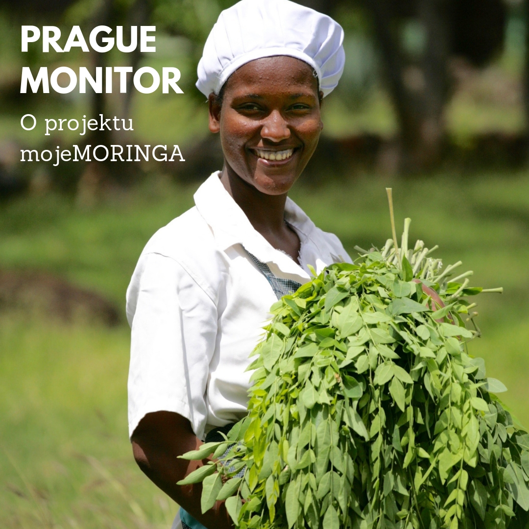 mojeMORINGA v Prague Monitor
