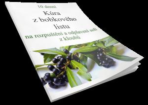 10 denní kúra z bobkového listu
