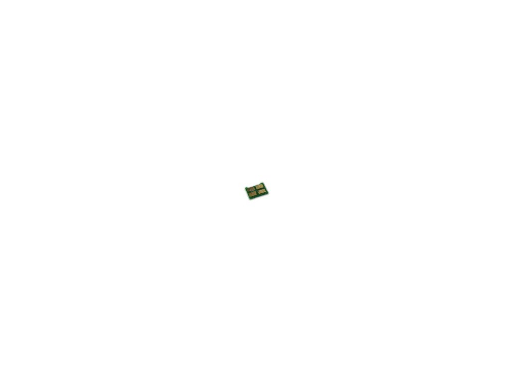 Samsung CLP-300 čip - black