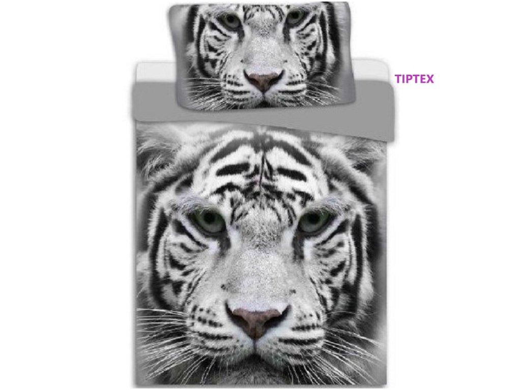 Tiger šedý
