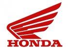 HORNET 600 2007-2013