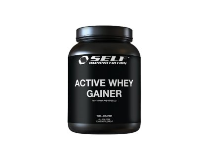 181022 active whey gainer