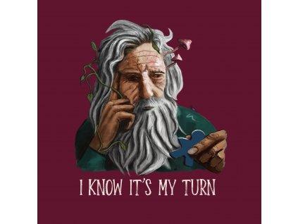 """T-shirt """"I know it's my turn""""  (deskoherní tričko)"""