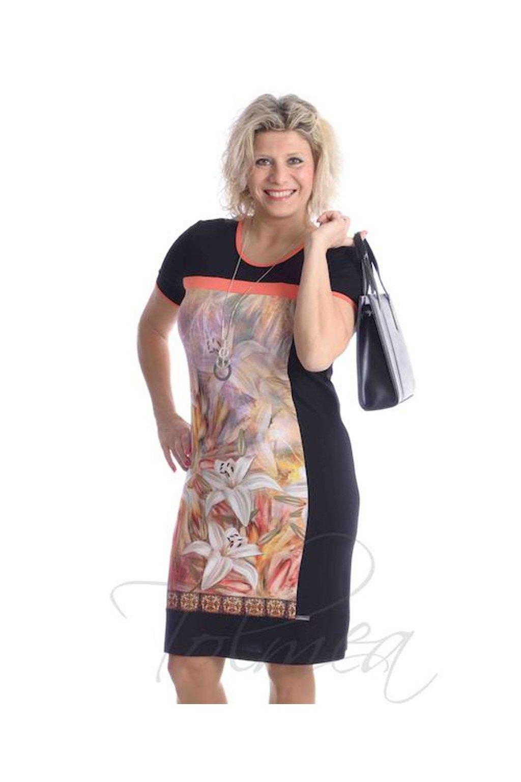 4819 Šaty obraz (Velikost 36, Barva Vzorovaná)