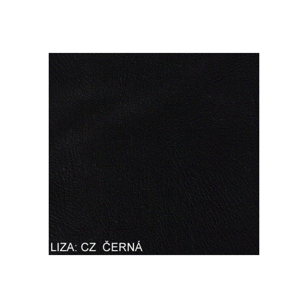 Koženka Liza CZ Černá
