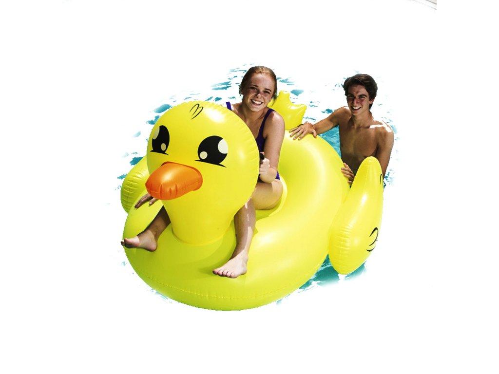 bestway kaczka do plywania z uchwytami