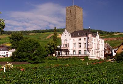 Sídlo a vinohrady vinařstí Carl Jung v městečku Rudesheim am Rhein