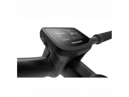 Display Giant Ridecontrol EVO - KM 35mm