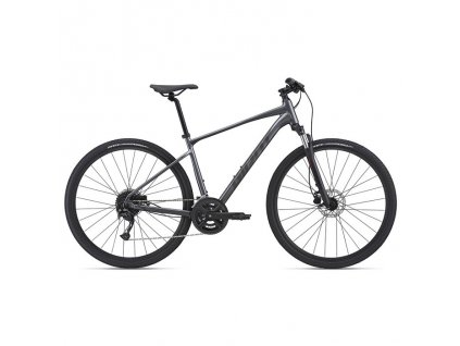 Bicykel Giant Roam 2 Disc charcoal 2021