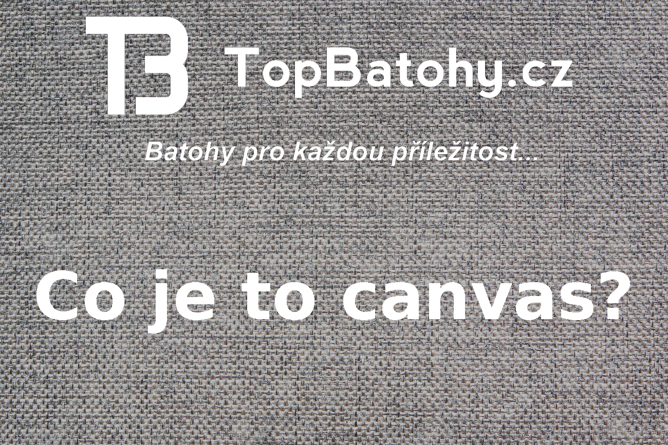 Co je to canvas?
