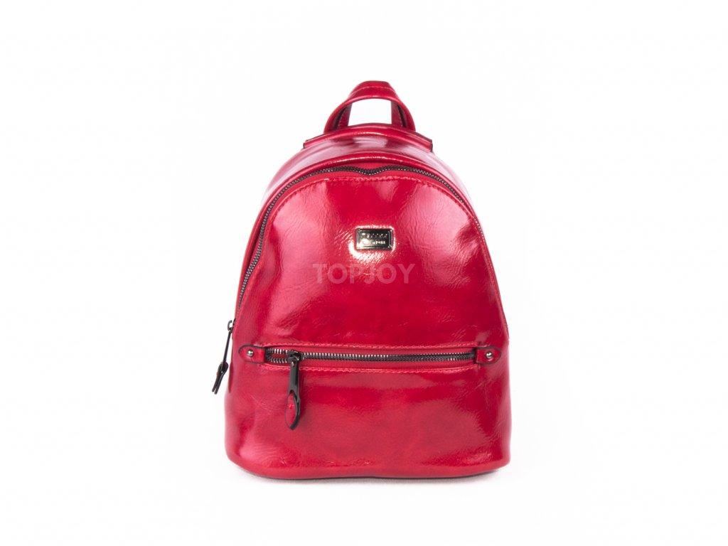 módní batoh lakovaný 4817 (6)