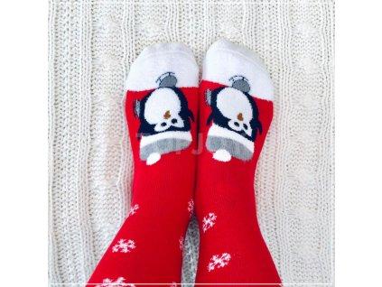 vánoční ponožky topjoy (11)