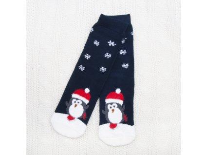 dámské vánoční termo ponožky snv6723 (2)