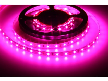 Speciílní LED pásek pro pěstování rostlin 12V 12W 1200K růžový
