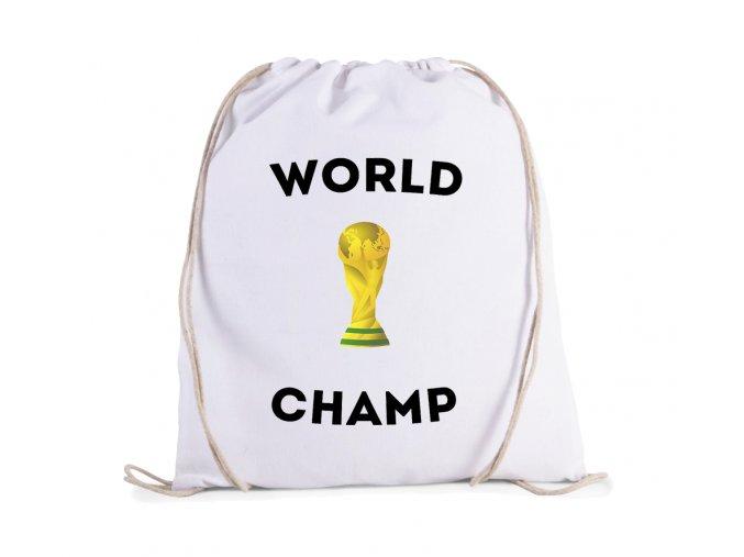 vak Fotbal mistr světa