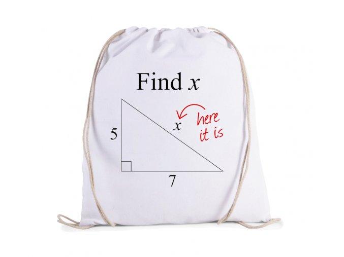 vak Matematika kolik je X