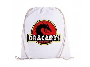 vak Game of Thrones Dracarys