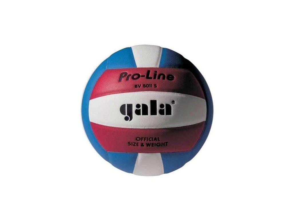 Volejbalový míč Gala Pro-Line BV 5011 S