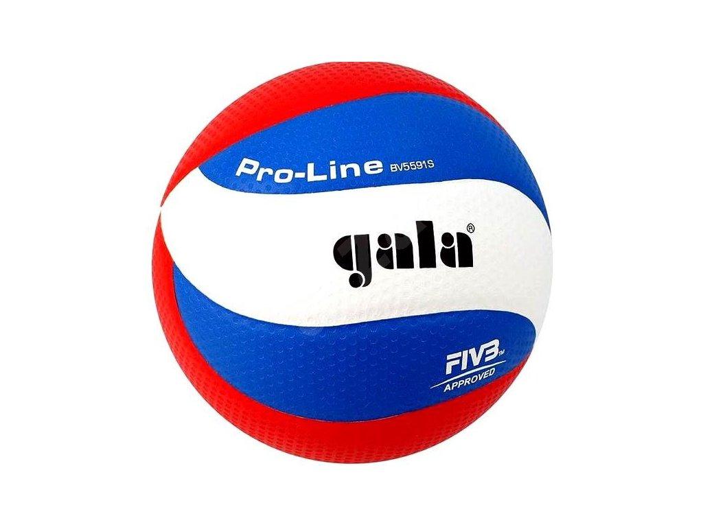 Volejbalový míč Gala Pro Line BV5591
